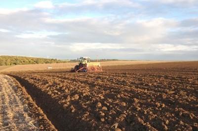 L'agriculture à Tipasa: L'exécutif de wilaya au chevet du développement agricole