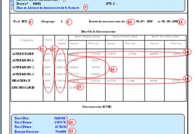 Affaire des « surfacturations » à Sonelgaz: Le « lanceur d'alerte » condamné à 6 mois de prison ferme!
