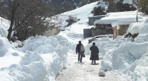 Tissemsilt : sauvetage d'un homme bloqué par la neige pendant cinq jours.