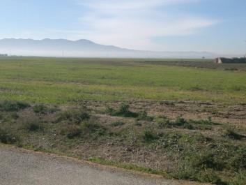 Plus de 100 000 hectares de terres non exploitées récupérés