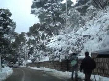 Brèves hivernales de Tlemcen