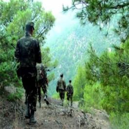 Onze caches pour terroristes, six mines et trois canons détruits par l'ANP