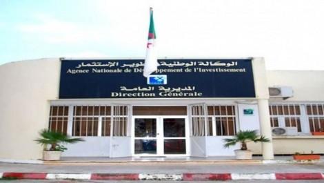 Richesses minières, faible endettement et avantages attractifs:  L'Algérie continue d'afficher les opportunités d'investissement