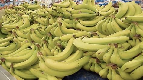 Plus de 10 tonnes ont été saisies: La contrebande de la banane explose
