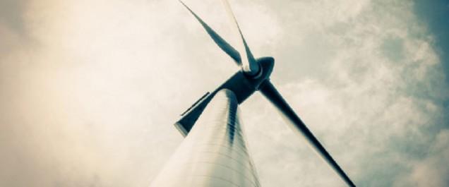 L'Algérie émerge comme l'un des champions de l'énergie durable (BM)