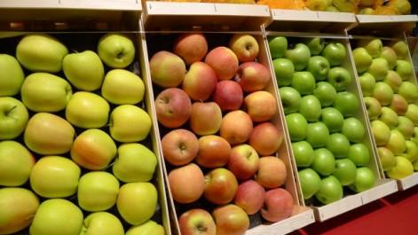 Estrosi veut obliger l'Algérie à importer 20 000 tonnes de pommes françaises