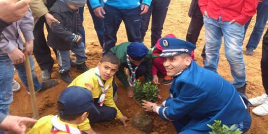 TISSEMSILT: Pus de 30.000 arbustes plantés à travers la wilaya