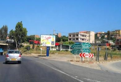 Ils devaient marcher sur Alger: La marche des Patriotes bloquée à Tidjelabine