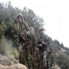 Selon un bilan de la revue «El-Djeïch»: Neutralisation de 28 terroristes en février