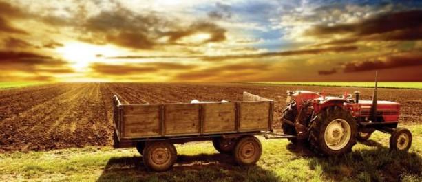 Selon Le directeur général de la CNMA: L'assurance multirisque à promouvoir dans le monde agricole