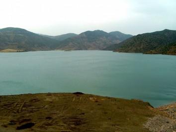 Journées mondiales de l'eau et de l'arbre à Aïn Defla: Campagnes de sensibilisation et de reboisement au barrage Sidi M'hamed-Ben Taïba