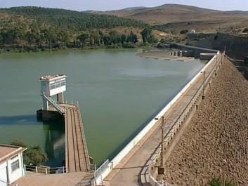 Adhésion massive à une campagne de plantation au barrage Bakhadda : Ce geste qui incarne citoyenneté et civisme