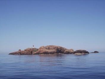 En prévision de son classement comme aire marine protégée: L'aménagement de l'Ile Plane en phase d'achèvement