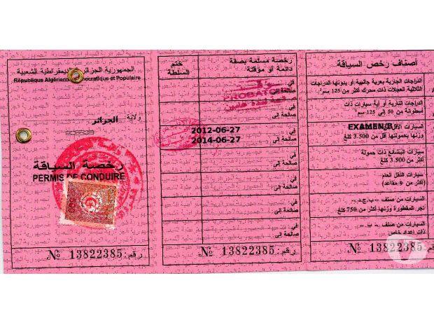 Alg rie le permis de conduire biom trique points for Interieur gouv point permis