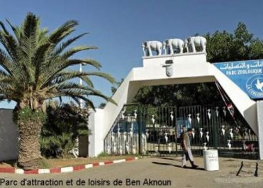 Parc d'attraction de Ben Aknoun : un bus immatriculé à Médéa prend feu