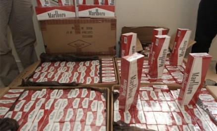 EL-OUED : Saisie de tabac de contrefaçon