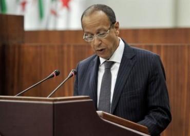 Algérie: Des mesures sont prises pour stabiliser les prix de la pomme de terre (ministre)