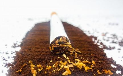 Ils devaient servir à la contrefaçon : 6,5 quintaux de tabac en poudre saisis