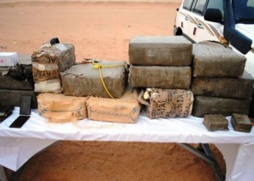 Saisie de plus de 257 kilogrammes de kif traité à Tlemcen