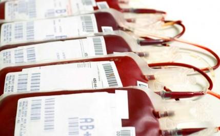 Soupçons de trafic de poches de sang en Algerie: Que devient le sang collecté ?