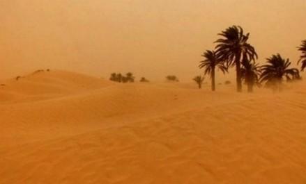 Des vents forts attendus jeudi sur plusieurs wilayas du sud du pays (BMS)