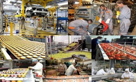 Rapprocher les opérateurs économiques pour renforcer le partenariat algéro-hongrois