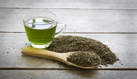 Le thé vert, un brûleur de graisse