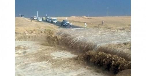 Le Plan mis sur pied par l'ONA n'a pas été d'un grand apport: Des pluies torrentielles et des dégâts importants à Tébessa