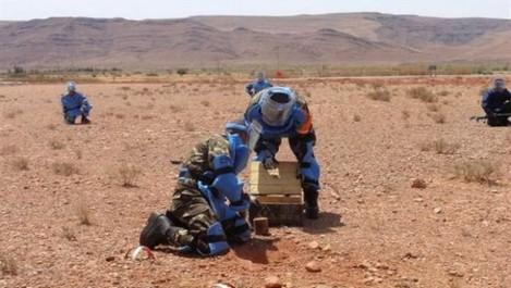 Lutte antiterroriste : 11 casemates et 2 mines détruites à Batna et Tébessa