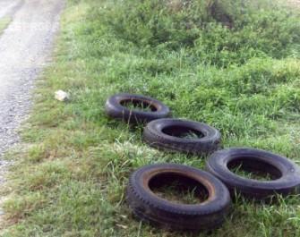 Oran : 22 162 tonnes de pneus usagés jetés annuellement dans la nature