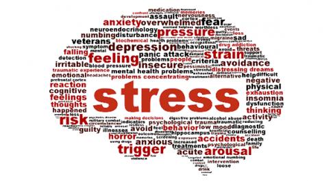 10 réflexes pour dire adieu au stress