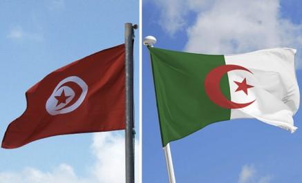 L'arrivée massive des Algériens en Tunisie cet été reflétée à travers ces photos du ministère du Tourisme