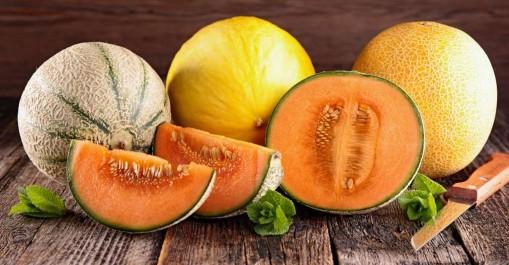Santé : bienfaits et vertus du melon