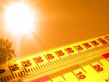 Des moyennes de 45° enregistrées: L'Algérie suffoque