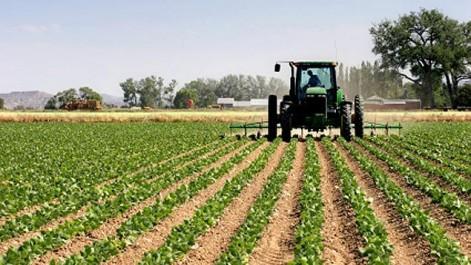 Agriculture: le gouvernement vise la sécurité alimentaire et la réduction du déficit commercial
