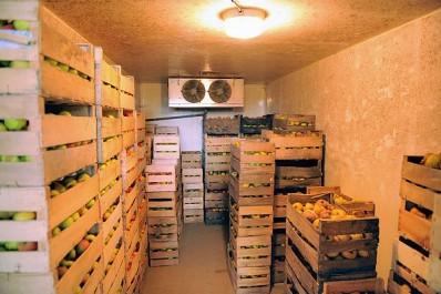 Stockage des fruits et légumes: Les chambres froides sont vides