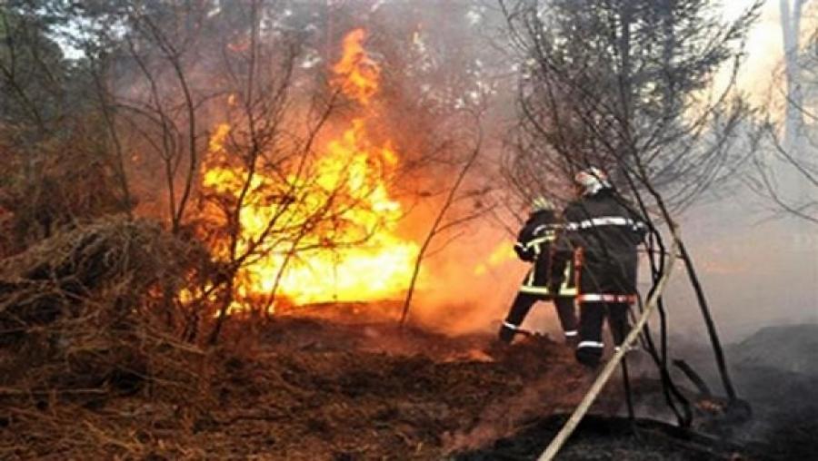 Incendies : 18 individus impliqués ont été arrêtés
