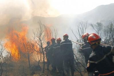 3 jours après l'incendie qui l'a ravagée: Chréa panse ses blessures