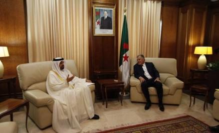Guitouni examine avec les ambassadeurs belge et émirati les opportunités  de coopération énergétique