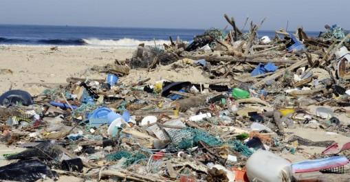 Saison estivale: 22 plages interdites à la baignade à Alger