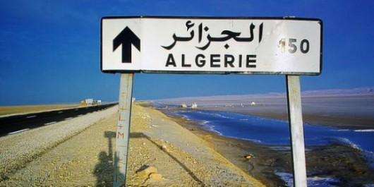 Emploi : les Tunisiens, recrues de choix pour l'Algérie