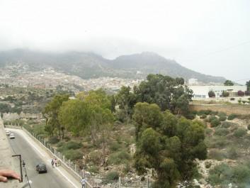 Les Planteurs, Ras El Aïn, terrain Chabat…: Plus de 200 nouvelles constructions illicites érigées récemment
