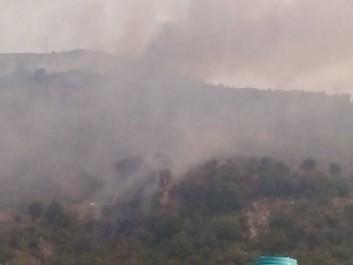 Canicule: Une forêt ravagée par des flammes monstrueuses à Tifra (Vidéo)