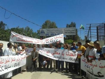 Alger – Les entrepreneurs impayés par l'ALRECC en grève de la faim persistent : «Notre argent ou la mort !» Soyez le premier à commenter!