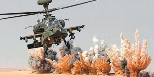 ANP : Exercice tactique à tirs réels à Djanet