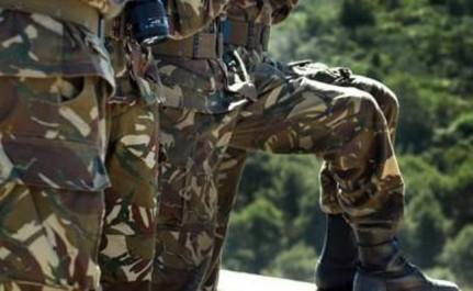 Un détachement de l'ANP découvre une cache d'armes et de munitions à El-Milia