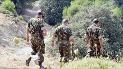 Un terroriste abattu par l'ANP à Bouira
