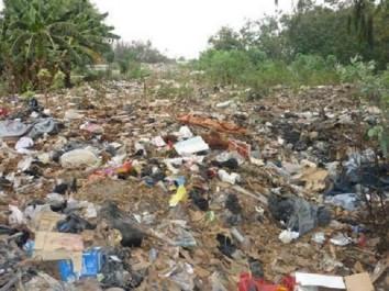 Atteinte à l'environnement: 18 541 infractions en six mois !
