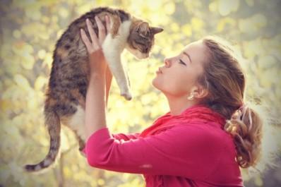 La domestication du chat a eu lieu à deux reprises