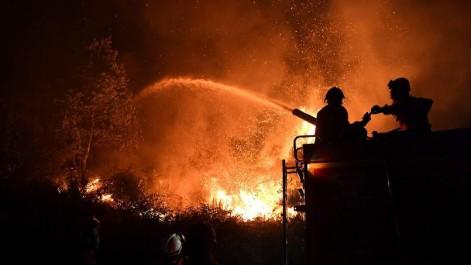 Bouira: Quatre foyers d'incendie en une journée